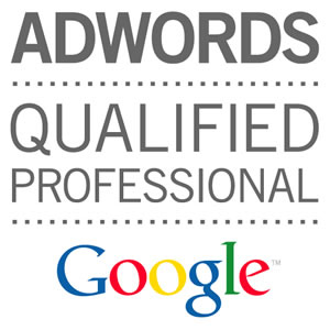 google-qualifier-professional