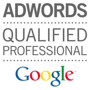 google-qualifier-professional